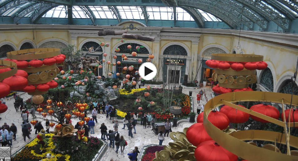 3. Webcam in de Bellagio bloementuin